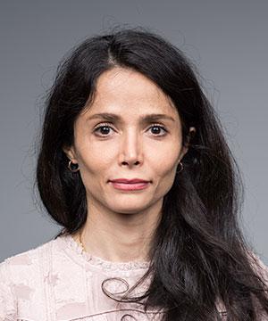 Fatemeh Nargesian